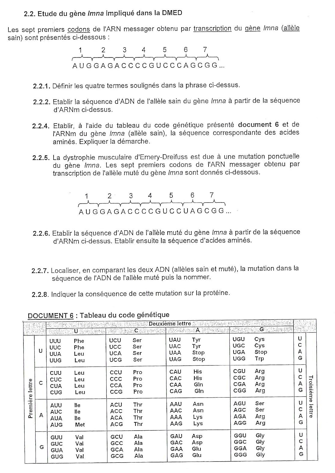 N Syntheseproteique